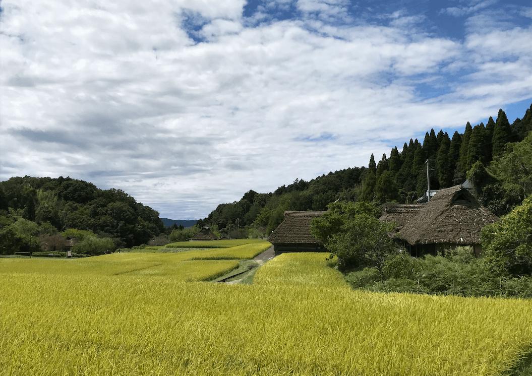 八塔寺の村